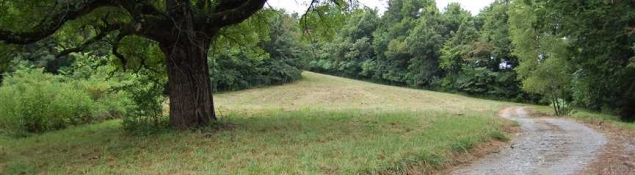Middle Tennessee Land For Sale